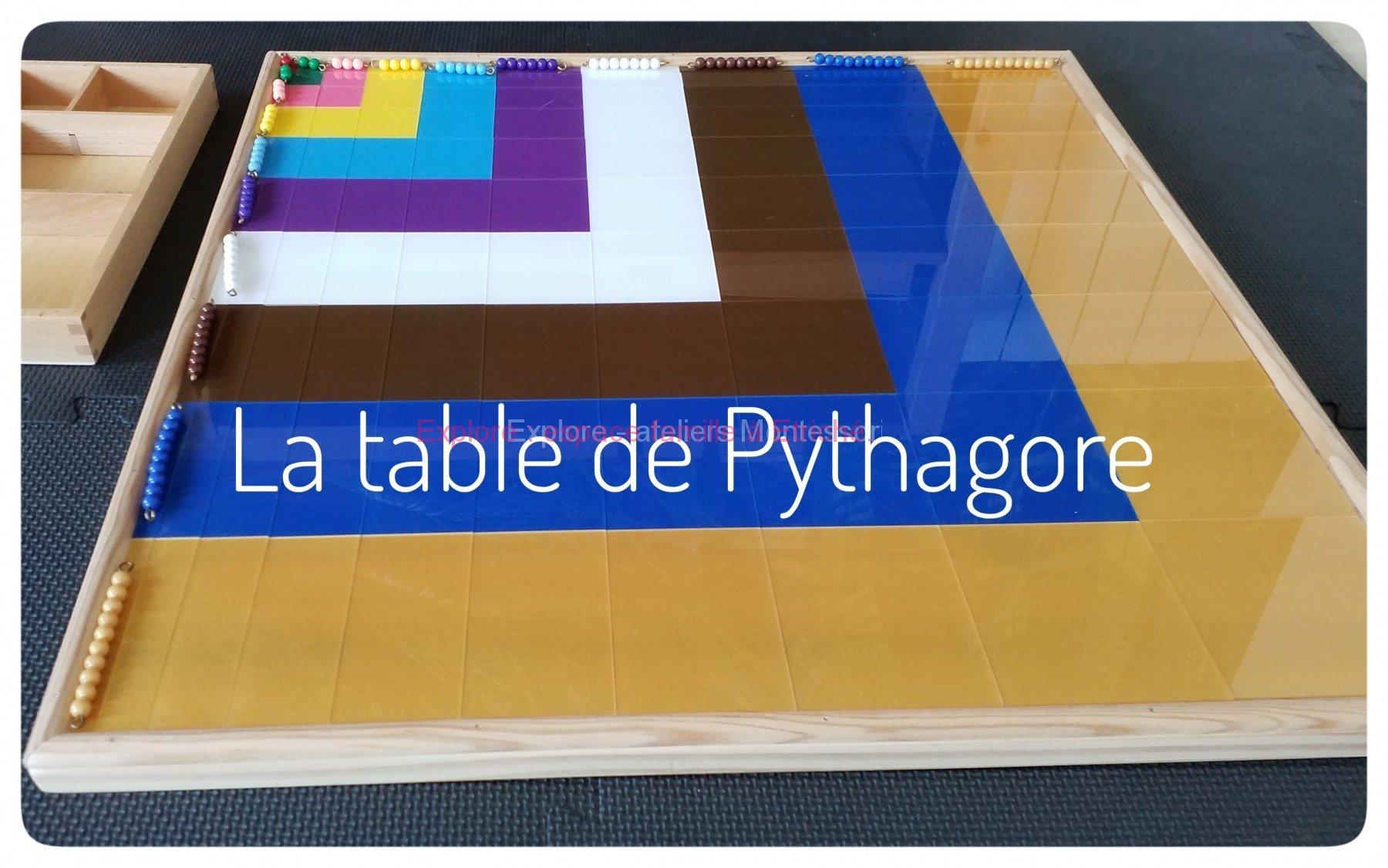 Soutien scolaire Montessori à Angers