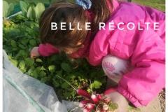 Première récolte de radis ;)